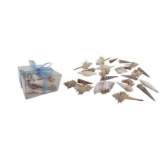 CARACOLES  EXOTICOS caja  c/moño 9x9x4 cm (110260)