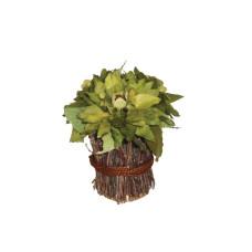 Flores Secas abedul 20cm*