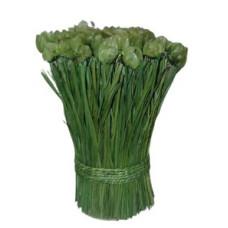 Flores Secas natural 25cm *
