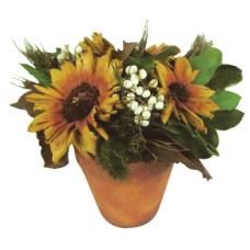 Flores Secas Girasol c/maseta 20cm.